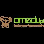 LOGO_FI_STUDIO_AMEDU