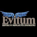 LOGO_FI_STUDIO_EVITUM