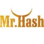 LOGO_FI_STUDIO_MR_HASH