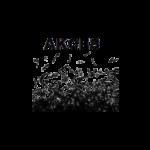 LOGO_FI_STUDIO_STOWARZYSZENIE_AKCES
